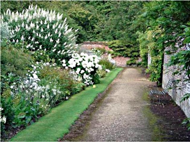 DA garden 2