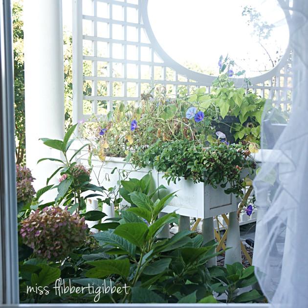 open-window-2