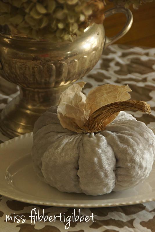 velvet-pumpkin-4