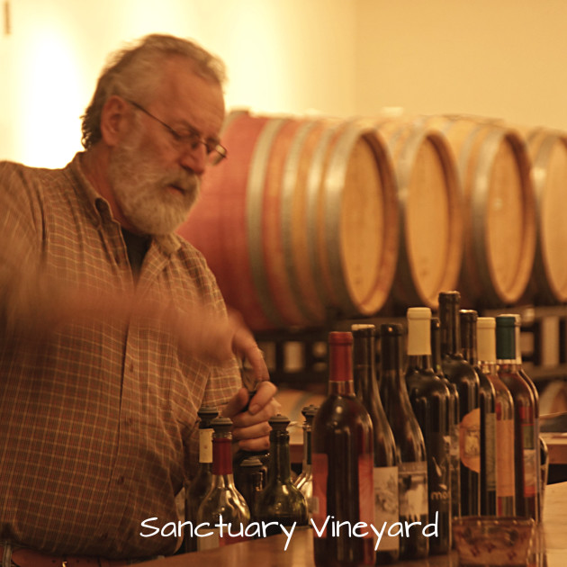 sanctuary-vineyard-10