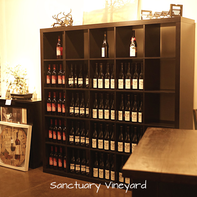 sanctuary-vineyard-11