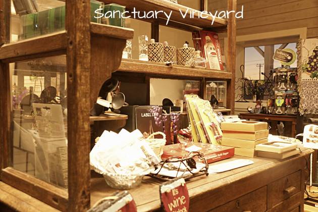 sanctuary-vineyard-5