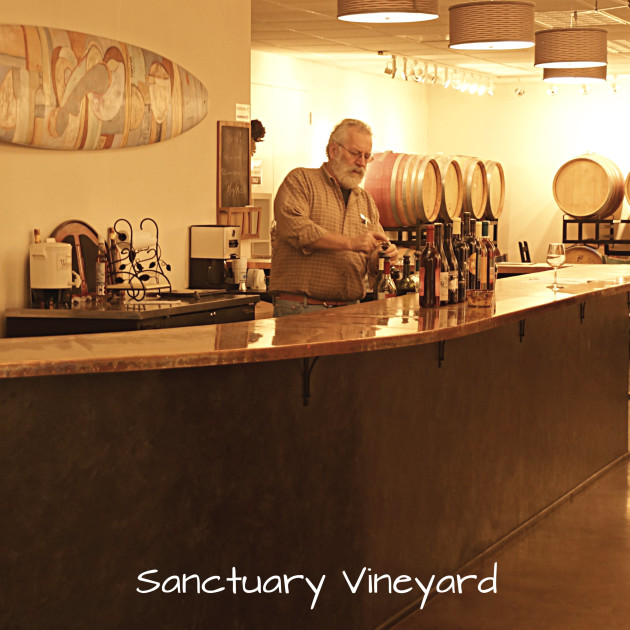 sanctuary-vineyard-9