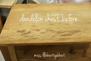 dandelion-chest-before